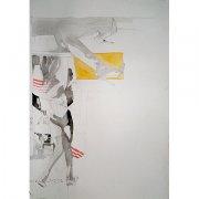 image 06-yellow_legs-ayuna_collins-fine_art-jpg
