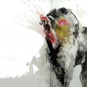 image 7-ayuna-collins_mandril_640x386-jpg