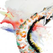 image 3-ayuna-collins_untitled-giraffe_640x430-jpg